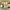 """""""BİZ HALA BURADAYIZ"""""""