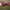 Fethiyespor sezon hazırlıklarına start verdi